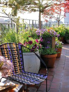 dachterrasse holzboden lounge möbel set grün weiß pflanzen, Garten und erstellen