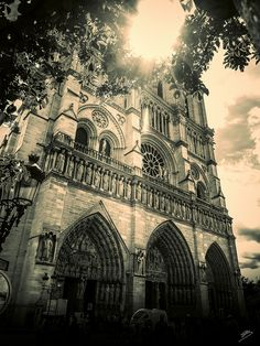 Notre Dame | Flickr - Photo Sharing!