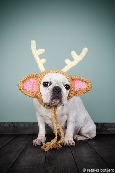 Rudolph the Red-Nosed Frenchie … Hooray for Bulldog Cosplay! Cute Puppies, Cute Dogs, Dogs And Puppies, Doggies, Baby Animals, Funny Animals, Cute Animals, I Love Dogs, Puppy Love