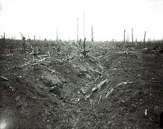An abandoned trench destroyed by shellfire, Delville Wood near Longueval, Somme, September, 1916: 'Look at this lunar landscape, absolutely destroyed and broken, it looks as if nothing would ever grow again,' says Mr McCullin. 'The only battle I was in that was similarly devastating was the Tet offensive in 1968. The Americans were shelling the city of Hue from offshore, using Phantom fixed-wing planes to dive-bomb and drop napalm. By the time they had finished Hue was totally flattened…