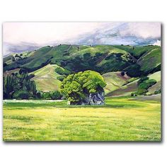 Trademark Art Spirit Rock Canvas Art by Colleen Proppe, Size: 18 x 24, Multicolor