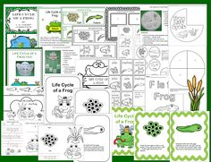 Life cycle of a frog has been added to 1 - 2 -3 Learn Curriculum. Includes a hat, mobile, book and more. :) Click on the picture to access the 1 - 2 - 3 Learn Curriculum web site and learn how to become a member to enjoy this file. Also make sure to check out free downloads. Jean 1 - 2- 3 Learn Curriculum