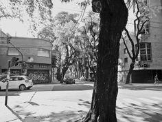 https://flic.kr/s/aHskxnbxof | Calle Guatemala y Thames, Palermo Soho, Buenos Aires | Calle Guatemala y Thames, Palermo Soho, Buenos Aires