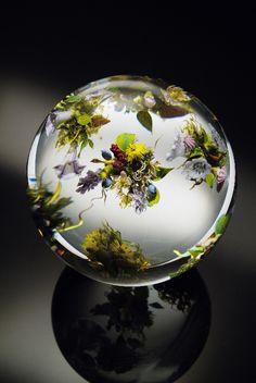 Beautiful Glass Paperweight By Paul Joseph Stankard