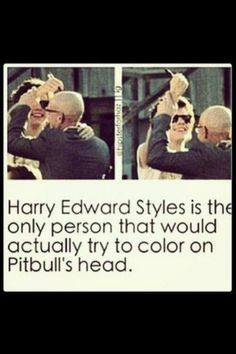 Harry is like the little nephew and Pitbull is like that Uncle who freaking loves his nephew but sometimes can't handle his shit❤️