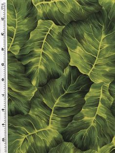 Leaf Candy Tonal Prints in 8 incredible, saturated colors -Kona Bay Fabrics