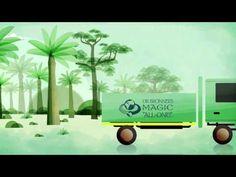 Faires Palmöl-Dr.Bronner's zeigt, wie das All-One Prinzip funktioniert!