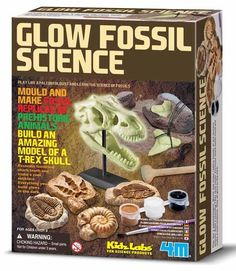 Kidz Labs Glow Fossil Science Mr 8 is dino mad. Discovery Toys, Gift Wraping, Science Kits, Educational Games, T Rex, Handmade Toys, Games For Kids, Glow, Cool Stuff