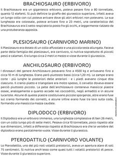 STORIA :: Maestro-Cris Dinosaurs, Montessori, History, School, Image, Geography, Classroom, History Books, Historia