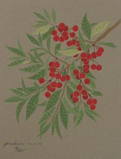 paper & ink: botanical serigraphs