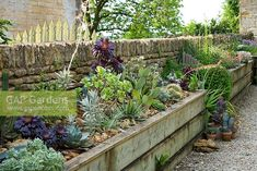 Small Space Gardening, Garden Spaces, Raised Garden Beds, Raised Beds, Backyard Layout, Courtyard Ideas, Landscaping, Oxford, Language