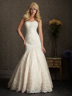 This dress is stunning. The fitted beaded bodice is slimming and the intricate lace hem and train will leave your guests in awe! The dress is brand new and never worn with the tags still on!