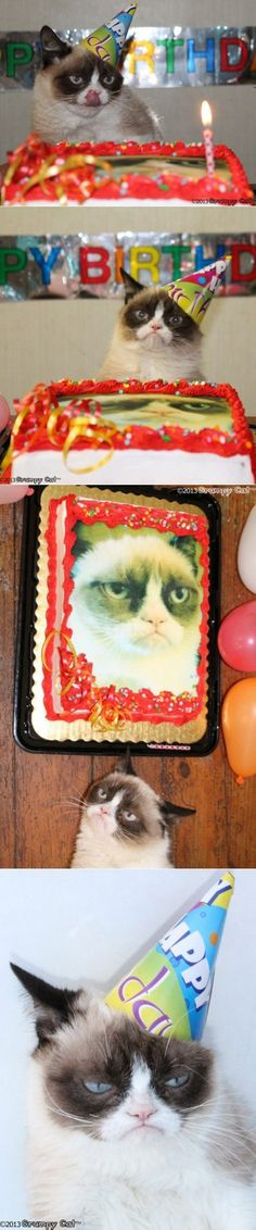 "Grumpy Cat's 1st Birthday! She looks like she's thinking, ""I didn't even want this!"""