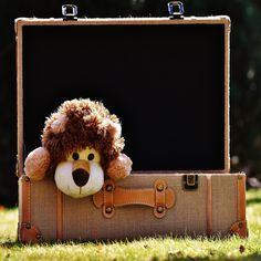Tips om resegrejer när du reser med småbarn! Och hur du kan få hjälp att önska pengar i present av vänner och bekanta. Reser, Suitcase, Presents, Teddy Bear, Toys, Animals, Travel, Guessing Games, Game Mechanics