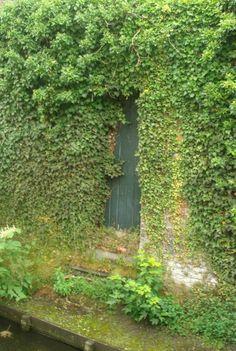 hidden doorway ...secret garden