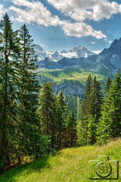 The Bernese Alps Switzerland bySilvan...