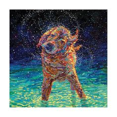 Iris Scott - 'Moonlight Swim' Painting Print on Wrapped Canvas