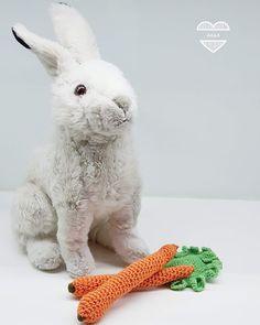 Virkatut porkkanat ja salaatinlehdet Rabbit, Socks, Neon, Sewing, Knitting, Crochet, Handmade, Animals, Bunny