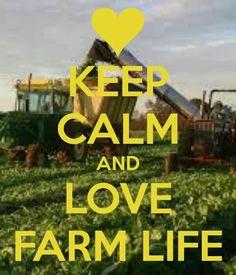 Farm life like we do http://cri.crinet.com/