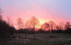En dejlig marts morgen