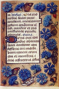 HOURS OF ENGELBERT OF NASSAU C. 1470-1490