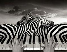 Surrealistic photographs of Thomas Barbey @Christen Glenn Glenn Glenn Woodruff