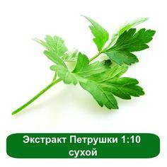 Экстракт Петрушки 1:10 сухой, 1 кг