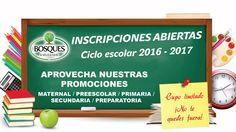 La mejor educación bilingüe para tus hijos. Desde Maternal hasta Preparatoria. Conoce nuestro Plan TODO Incluido!! Cupo Limitado. Solicita informes al Whatsapp 4423477700.