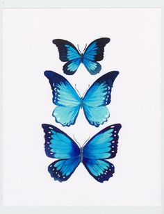Blue Morpho Butterfly Painting por BumbleBirdStudio en Etsy