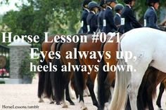 Horse lessons : Photo