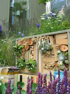 Garden designer Agata Byrne, Dalkey Book Festival, garden display with insect hotel, June, 2011