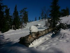 Lumen muovaama maasto