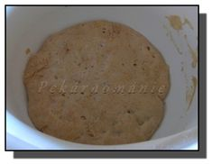 Staré těsto - old dough - pâte fermentée