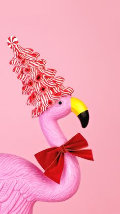 #pink #flamingo #iphone #hdwallpaper Flamingo Wallpaper, Pink Wallpaper Iphone, Pink Iphone, Hd Wallpaper, Iphone Wallpapers, Tropical Christmas, Pink Christmas, Pink Pages, Red Art