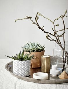 Image result for tray for succulents and candle