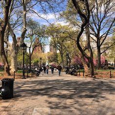 #Manhattan #NewYorkCity #WashingtonSquarePark #SpringtimeinNYC #NYC - http://washingtonsquareparkerz.com/manhattan-newyorkcity-washingtonsquarepark-springtimeinnyc-nyc/
