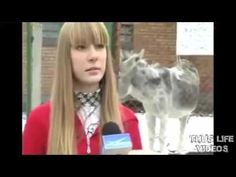 Thug life   Best Thug Life compilation Episode 14   Funny videos 2015
