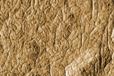 Volcanic spirals of Cerberus Palus, Mars. Strangely looks like elephant skin.