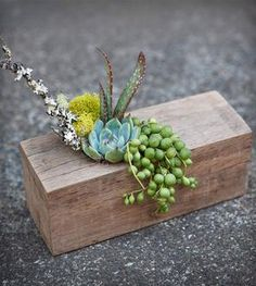 Rectangular Wooden Beam Planter with Succulents