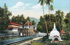 Temple of the Holy Tooth, Kandy, Ceylon Website Images, Run Around, Kandi, Countries Of The World, Vintage Images, Sri Lanka, Google Images, Taj Mahal, Buddha