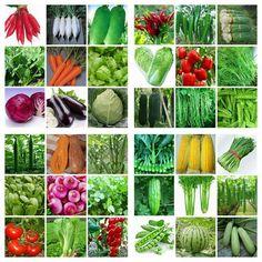 HEIRLOOM VEGETABLE GARDEN SEEDS NON GMO / HYBRID ORGANIC SURVIVAL PLANT BANK LOT #Unbranded