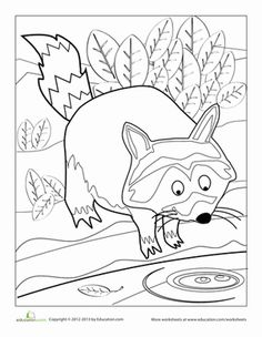 raccoon coloring page - Chester Raccoon Coloring Page