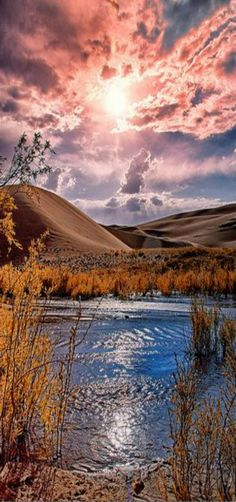 Reflections, at the Great Sand Dunes National Park, Colorado, USA   by Dave Soldano