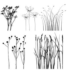 Find Collection Designers Plant Vector stock images in HD and millions of other royalty-free stock photos, illustrations and vectors in the Shutterstock collection. Thousands of new, high-quality pictures added every day. Doodle Drawings, Doodle Art, Plant Vector, White Plants, Flower Doodles, Zentangle Patterns, Doodle Patterns, Pyrography, Painting & Drawing