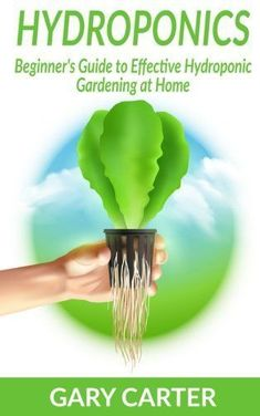 Hydroponics: Beginner's Guide to Effective Hydroponic Gardening at Home #hydroponicsathome