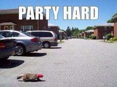 hhahhahah party rocker