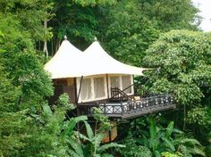 Four Seasons.tented camp Chiang Rai | ... - Picture of Four Seasons Tented Camp Golden Triangle, Chiang Saen