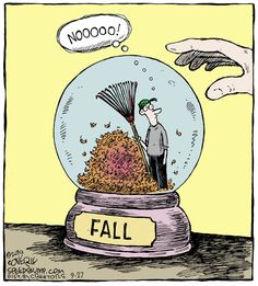 Fall leaves - Speed Bump for Cartoon Jokes, Funny Cartoons, Funny Comics, Speed Bump Comic, Funny Cute, Hilarious, Fall Funny, Funny Images, Funny Pictures