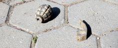 İzmir'de 3 el bombası bulundu