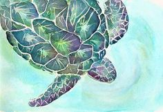 watercolor sea turtles